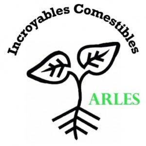 cropped-ICArles-7.jpg