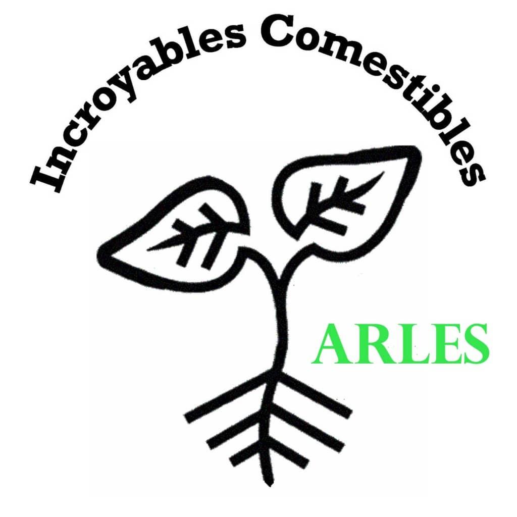 ICArles bd 7
